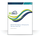 BI360 for SAP Business One (Whitepaper)